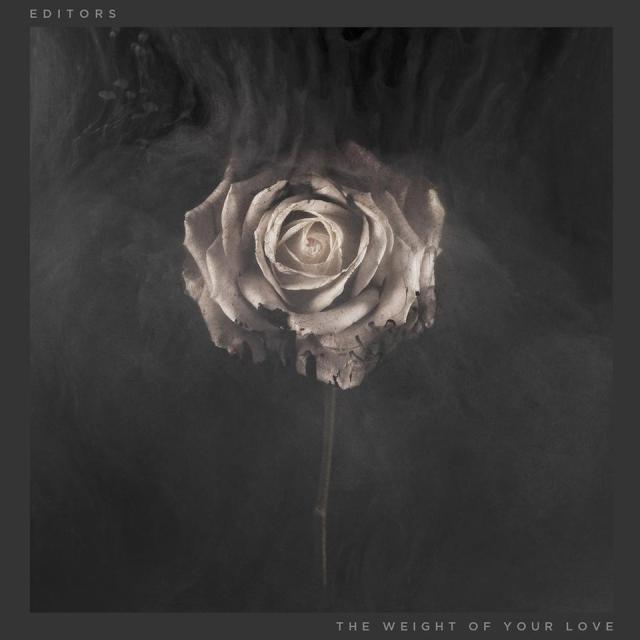 editors-theweightofyourlove